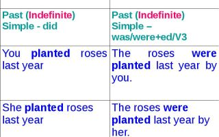 Past simple passive: образование грамматических форм и примеры предложений
