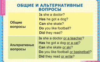 Альтернативный вопрос в английском языке – примеры, особенности, тонкости использования